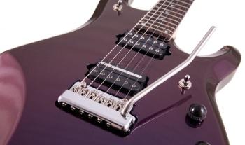 Musicman Petrucci, 24 cases de bonheur!!!!